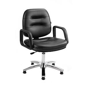 Direct Salon Supplies Palma Styling Chair