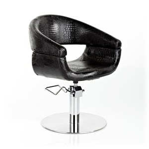 Direct Salon Supplies Niagra Hydraulic Styling Chair