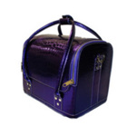 Hair Tools Metallic Purple Crocodile Effect Beauty Case