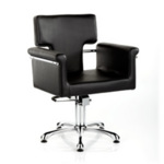 Direct Salon Supplies Laser Hydraulic Styling Chair