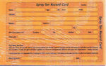 Direct Salon Supplies Spray Tan Record Cards Pack 100